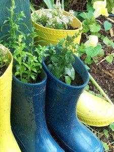 Old rain boots as planter pots.  So cute!