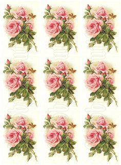 free digital scrapbooking roses - Google Search
