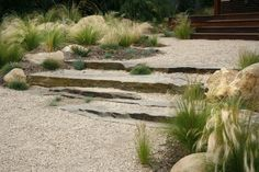 El Pueblo Viejo Garden: Located in Santa Barbara, California, U. Designed by Margie Grace of Grace Design Associates also based in Santa Barbara Dry Garden, Gravel Garden, Garden Paths, Gravel Pathway, Pea Gravel, Walkways, Landscape Steps, Landscape Design, Landscape Architecture