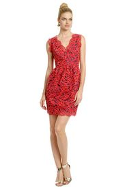 Primary Lace Dress