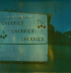 time zero polaroid  cherries  california    www.jennifer.evans.carbonmade.com