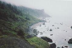foggy coastline.