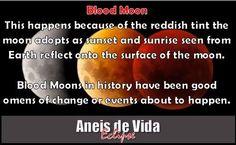 Lunar Eclipse, Blood Moon, October 2014, Reflection, Events, Sky, Shit Happens, Blog, Life
