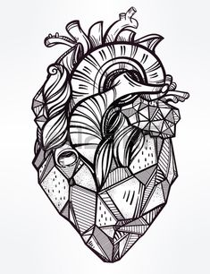 Heart of stone highly detailed vintage style hand drawn line art Beautiful…