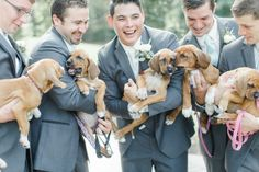 These Lucky Groomsmen Held PUPPIES for Their Wedding Photos   Brides.com