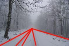 Le linee nella composizione fotografica