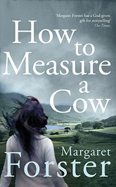 How to Measure a Cow by Margaret Forster https://www.amazon.co.uk/dp/B017IGPU08/ref=cm_sw_r_pi_dp_8cNNxb5GW6ZC2