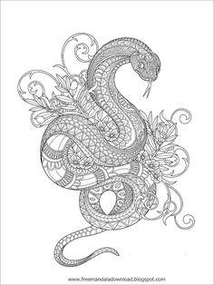 Snake Coloring Pages, Detailed Coloring Pages, Pattern Coloring Pages, Printable Adult Coloring Pages, Cute Coloring Pages, Mandala Coloring Pages, Coloring Books, Doodle Art Drawing, Mandala Drawing