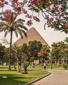 Where are you going on holidays this summer Did you know that the three pyramids in Giza Necropolis are the most famous Egyptian pyramids but there are about 140 pyramids in total that have been discovered in the area of the Ancient Egypt iso sec Visit Egypt, Going On Holiday, Giza, Ancient Egypt, Egyptian, To Go, Sidewalk, Mansions, House Styles