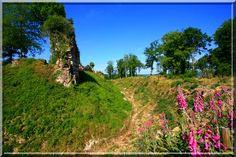 Pensez vous que la belle damoiselle du château de Montfort sur Risle cueillait des fleurs des prés pour embellir les salles peu éclairées de la rustre et solide construction médiévale  ?