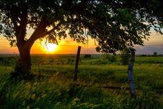 shook kansas photos | Scott Bean - Kansas Landscape Images - Center for Great Plains Studies ...