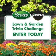 Win 1 of 4 weekly $500 Cash prizes or a Grand Prize of $5000 from Scotts!