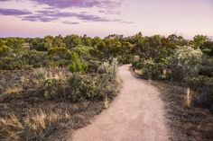 10 things we love about Mildura. 