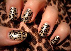 Metallic cheetah