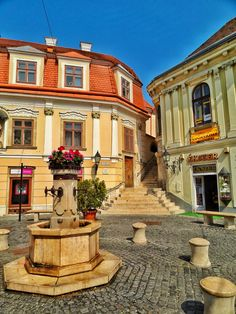 A day trip to Székesfehérvár is a must when traveling to Hungary. It's located between Budapest and Lake Balaton and it's one of the oldest towns of Hungary Cool Places To Visit, Places To Go, Central And Eastern Europe, Royal Residence, Day Trip, Small Towns, View Photos, Old Town, Travel Inspiration