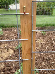 DIY garden fence with a swivel to open anywhere you want Cheap Garden Fencing, Diy Garden Fence, Garden Fence Panels, Farm Fence, Backyard Fences, Garden Trellis, Garden Boxes, Pool Fence, Container Garden