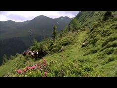 Urgemütliche Almhütte in Alleinlage auf 1.700 m im Naturpark Sölktäler. ❤ Die Bröcklalm für 2 - 8 Personen in der Steiermark. ❤ Jetzt mieten. Water, Outdoor, Vacations, Viajes, Gripe Water, Outdoors, Outdoor Living, Garden, Aqua