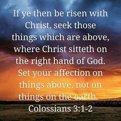 #Bible #Jesus #FaithWalk #SeekGod  #TrustInHim