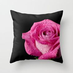 Rose Pillow Cover by ©Crystal Gayle Photography