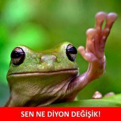 SEN NE DİYON DEĞİŞİK! #mizah #matrak #komik #espri #şaka #gırgır #komiksözler #caps