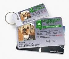 Custom Pet ID tags from mypetDMV are built to last forever, now get fully customized pet identification cards from mypetDMV