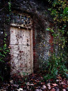 The Secret Garden: Persahabatan Sejati di Tengah Taman Rahasia Secret Garden Door, Garden Doors, Garden Gates, Foggy Forest, Budapest, Wooden Screen, Best Flooring, Perfect World, Types Of Wood