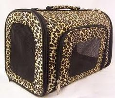 If this wasn't such a common shaped carrier I'd get it for my Zoey :)