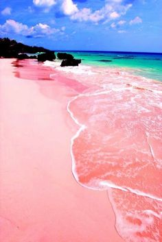 """Pink Sands Beach, Harbour Island, Bahamas. """"Harbour Island is just 3.5 miles long and 1.5 miles wide, but this tiny slice of the Bahamas has one of the Caribbean's prettiest beaches: three miles of pink sand that stretches along the island's east coast. The red shells of foraminifera—single-celled marine animals—mix with the island's white sand, thus creating the soft rosy hue."""""""