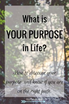 What is your purpose in life? How to discover your purpose, and know if you are on the right path. via Hoofbeats and Ink.
