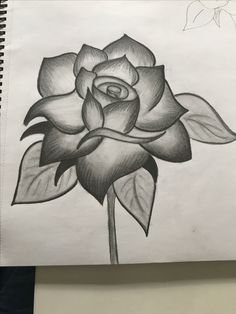 Flower Art Drawing, Flower Drawing Tutorials, Art Drawings, Roses, Big, Tattoos, Flowers, Dish Towels, Drawings