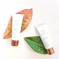 """""""Sweep dry, flaky skin away with our Rejuvenating Face Polish. Finely crushed cocoa bean shells retexture the skin while the whole cocoa bean plant helps…"""""""