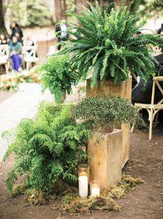 Enchanted Santa Lucia Preserve Forest Wedding in Carmel-By-The-Sea Santa Lucia Preserve, Wedding Altars, Forest Wedding, Vaulting, Modern Rustic, Preserves, Special Day, Floral Wedding, Florals