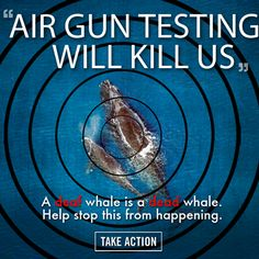 URGENT: The blast from a seismic air gun is 100,000 times louder than a jet engine - & oil companies want to use this tool to look for oil on the ocean floors 24 hours a day. This testing will KILL & INJURE hundreds of thousands of whales. Tell the government seismic air gun testing is NOT O.K.!  PLZ Sign & Share!