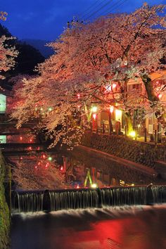 "(Kinosaki Onsen, Kyoto-fu, Hyogo-ken) Classic beautiful onsen town - a shrine built to celebrate onsen! The vapor baths (hammam) is where bathing is elevated to a level on the Japanese know how to do!! Perhaps the most interesting onsen town in Japan, located very close to the Japan Sea. So many classic ryokan to explore. The incredible ""Soto-yu"" is here (indoor, outdoor, saunas, waterfalls, cave baths, hammams and Jap/Euro type spas). Give me a yukata!!"
