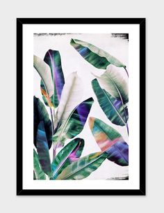 """""""tropical #1"""", Numbered Edition Fine Art Print by LEEMO - From $25.00 - Curioos"""