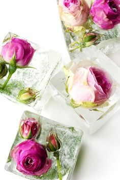 Make a Splash With These 12 Creative Ice Cubes to Spruce Up .-Make a Splash With These 12 Creative Ice Cubes to Spruce Up Your Drink Floral Ice Cubes: - Flower Ice Cubes, Ice Bowl, Silvester Party, Deco Floral, Floral Design, Ice Ice Baby, Edible Flowers, Resin Flowers, Belle Photo