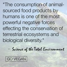 From science of the total environment