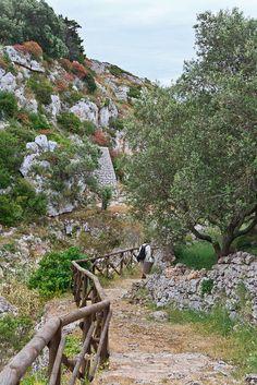 Wild and free in Salento, Apulia, Italy