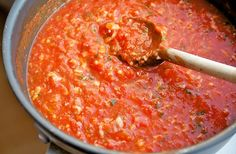 Simple Italian Tomato Sauce: Onion, garlic, tomatoes, parmesan, fresh basil, and fresh parsley.