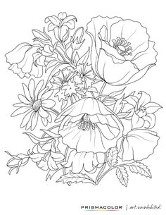 grey scale coloring pages - photo#49
