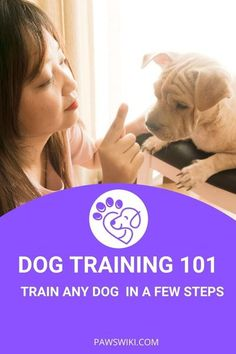 Top training tips Always start lessons for new tricks in a quiet room in your house away from any distractions Puppy Training Classes, Online Dog Training, Basic Dog Training, Training Your Puppy, Puppy Care, Dog Care, Wrinkle Dogs, Dog Grooming Tips, Dog Cleaning