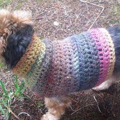 Close-up of crochet dog coat. www.itchinforsomestitchin.com
