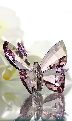 Swarovski Celebrations Light Amethyst Large Butterfly