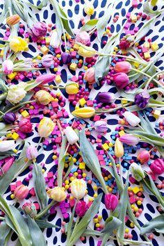 Tulpen Plukken op de Dam? Lees het op Tuincentrum Overzicht!  https://www.tuincentrumoverzicht.nl/actueel/5136/nationale-tulpendag-2017/
