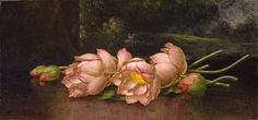 Lotus Flowers: A Landscape Painting in the Background, Martin Johnson Heade, circa 1885–1900, Gift of the Sarah Graham Kenan Foundation, in honor of Mrs. Sarah Graham Kenan