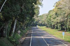BR-469: Road to Iguaçu Falls
