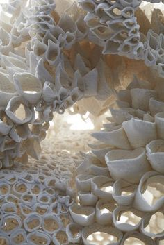 Coral. Detalhe de escutura em porcelana por Nuala O'Donovan.    Coral, detail - sculptural porcelain by Nuala O'Donovan