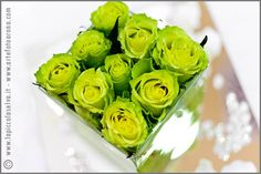 Acid Green is the new flower theme for 2009 Summer weddings: bouquet and floral arrangements by La Piccola Selva florist in Lake Orta and Lake Maggiore, Italy. Green Rose, Green Flowers, Pink And Green, Bright Green, Green Colors, Yellow, Green Wedding Decorations, Green Centerpieces, Green Weddings