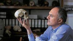 Cráneo de 1,8 millones de años pone en duda la evolución humana