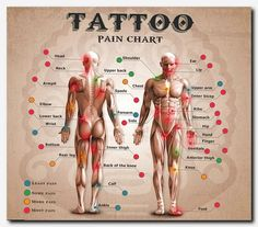 tattoo Wondering how much that next tattoo will hurt Check out this website first